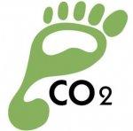 Energy & Carbon